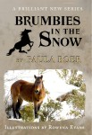 Brumbies in the Snow Cover