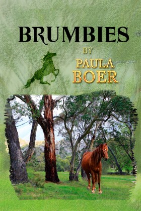 B1 2nd Edition Front Cover