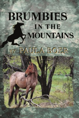 Brumbies in the Mountains 2nd Ed Front Cover