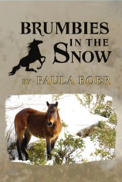 Brumbies in the Snow Second Edition Front Cover