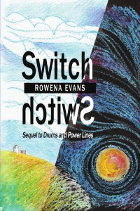 Switch front cover