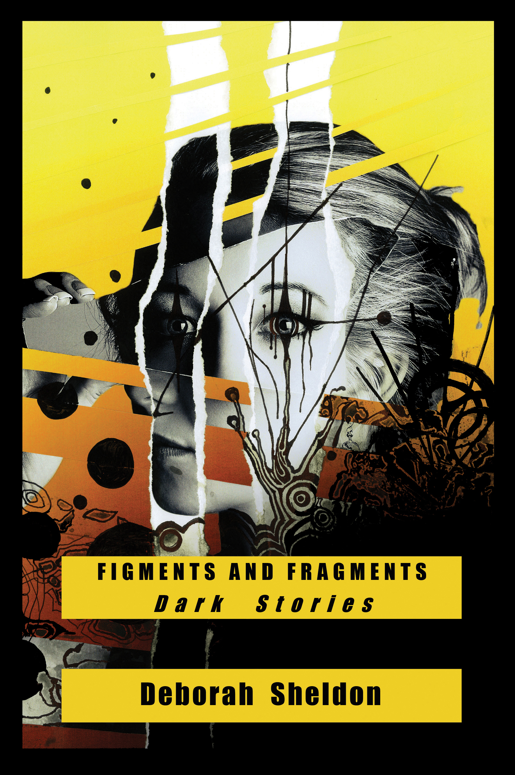 Figments and Fragments Book Cover